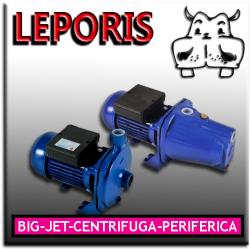 Pompa electrica de suprafata multietajata în fonta centrifugala 50:100, 150:200 Leporis  la cel mai bun pret