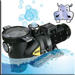 Elettropompe e sistemi per piscine in offerta for Piscine in offerta